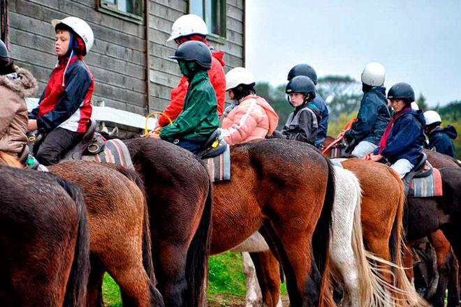 horse riding Ace-Hi Mornington Peninsula