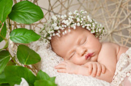 Gorgeous baby asleep in flowers