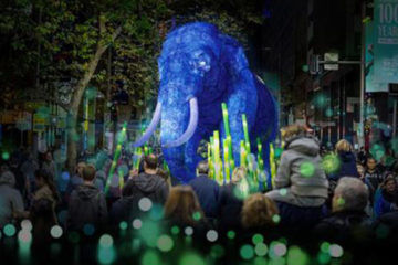 Elephant light sculpture during Tooronga Zoo Parade