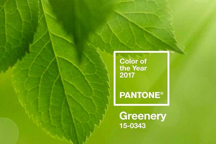 Pantone 2017 colour of the year- greenery