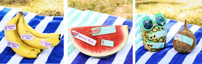 Hippo Blue Summer labels