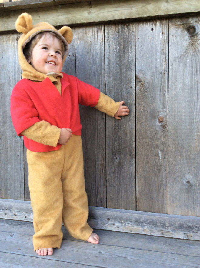 winnie the pooh dress up costume