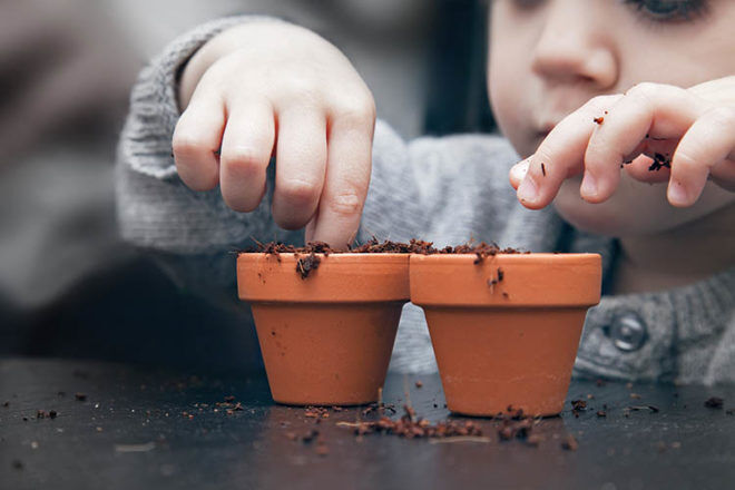 toddler planting seedling things to do outdoors in autumn with kids