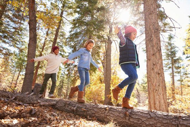 nature trail bush walk autumn kids
