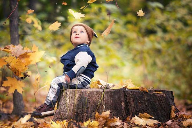 toddler outdoors autumn leaves