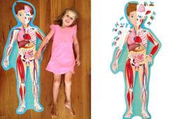 200-piece Sassi Science Human Body jigsaw