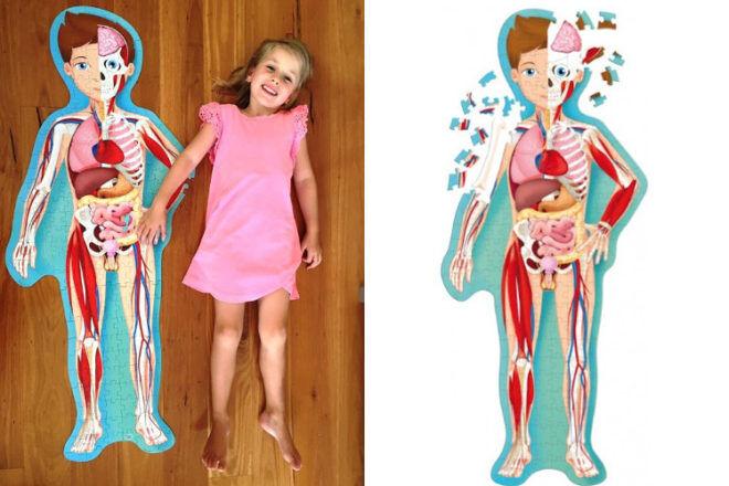Giant Human Body Puzzle Teaches Preschool Kids Biology Basics