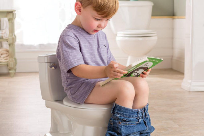 My Size Potty toilet training
