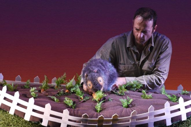 Diary of a Wombat live on stage