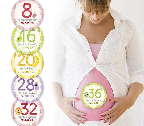 Pearhead's 16 sticker collection pregnancy milestone cards