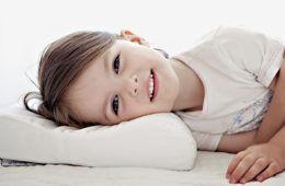 Ollie Owl Toddler Pillows