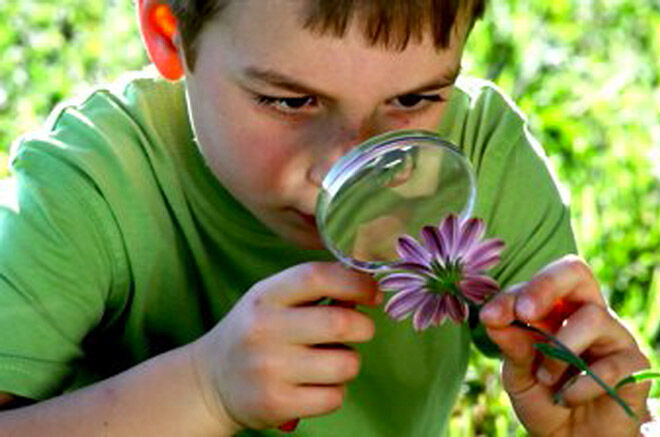 Boy looking at flower through a magnifying glass