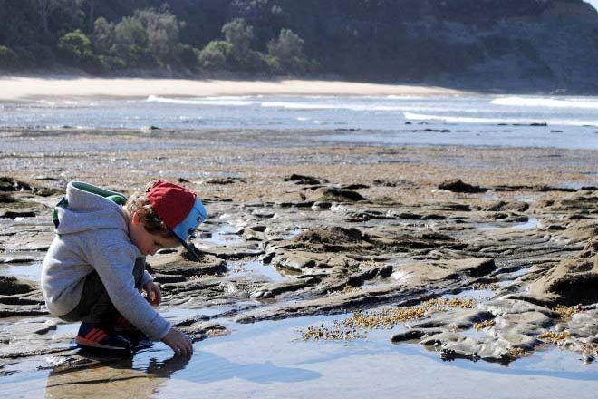 best places to go rockpooling n Australia with kids