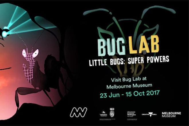 Melbourne Museum bug lab