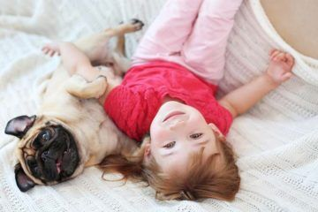 reasons kids should have a dog