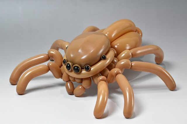 Masayoshi Matsumoto - jumping spider balloon animal