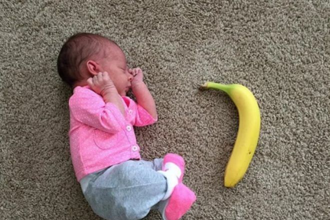 wee baby vs banana by Here We Go AJen
