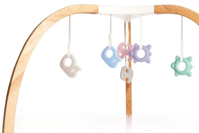 Mioplay activity gym