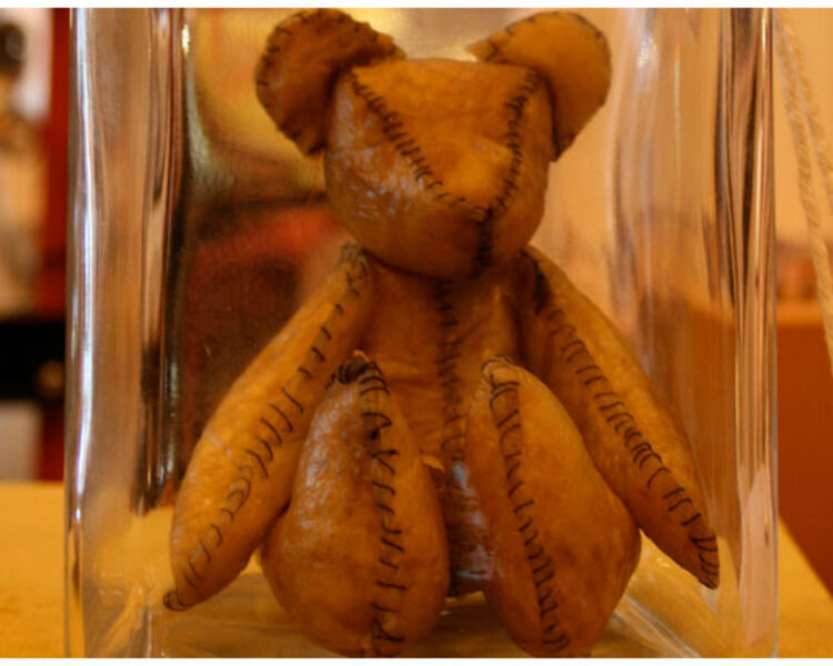 Teddy bear with skin made from dried placenta