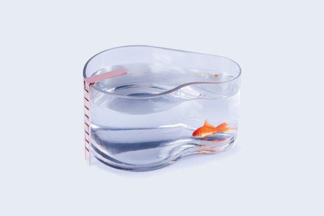 DOIY Fishpool fish tank