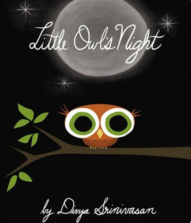 little owls night by divya srinivasan