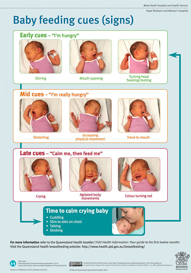 A visual guide to understanding a baby's hunger signs