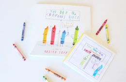DYI The Day The Crayons came to life book