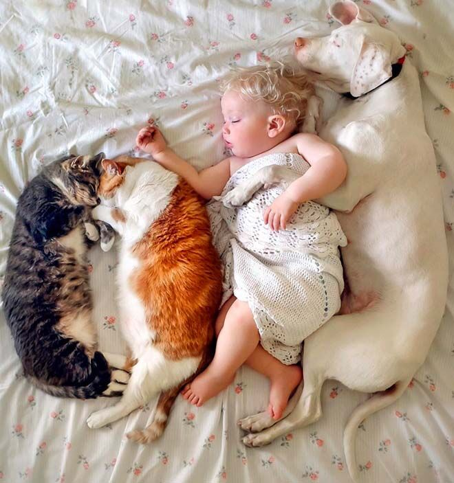 Insta Crush: the adorable kids and rescue pets of wellettas