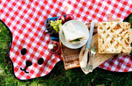 SUCK UK bear skin rug picnic