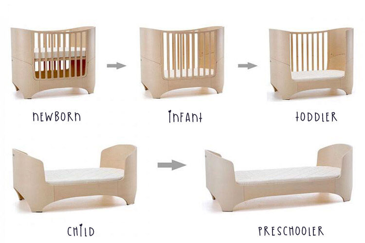 Leander cot age stages