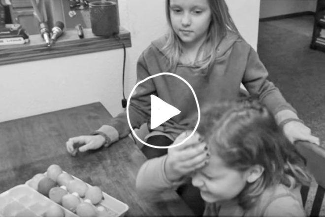 Hilarious Egg Gender Reveal