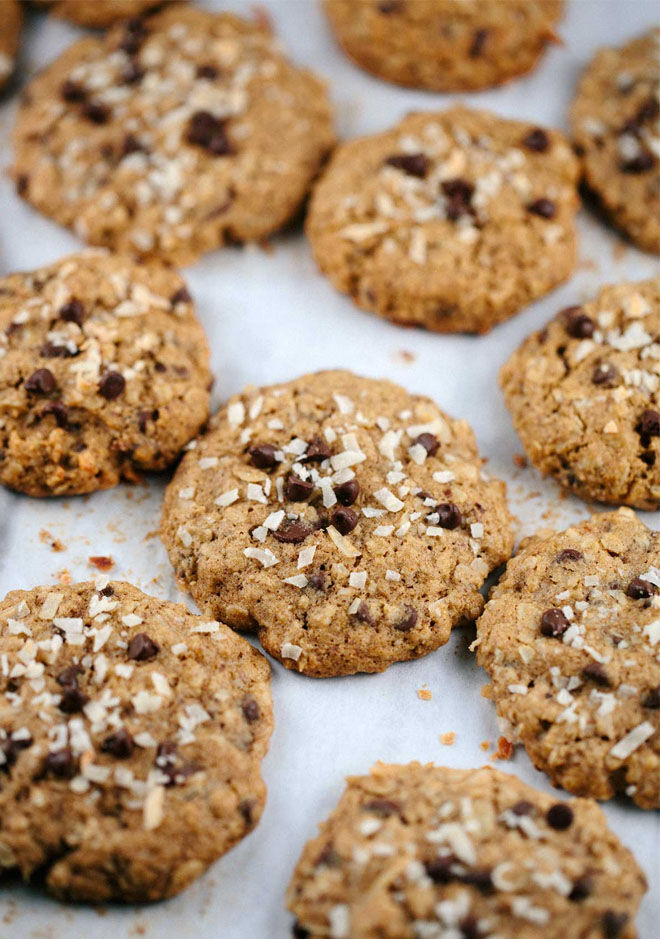 Oatmeal Chocolate Chip Coconut Lactation Cookies