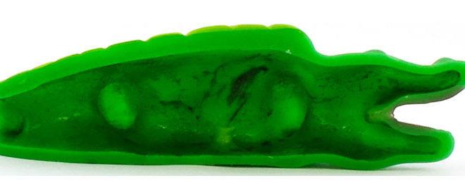 bacteria in rubber crocodile