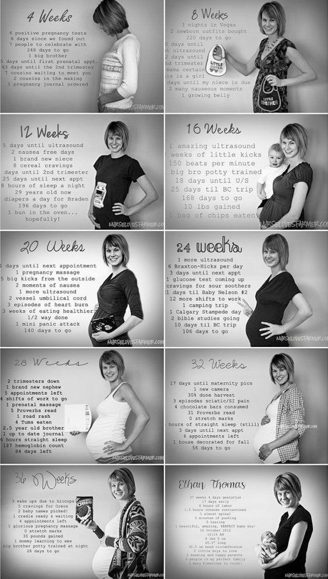 Evolution of pregnancy photos