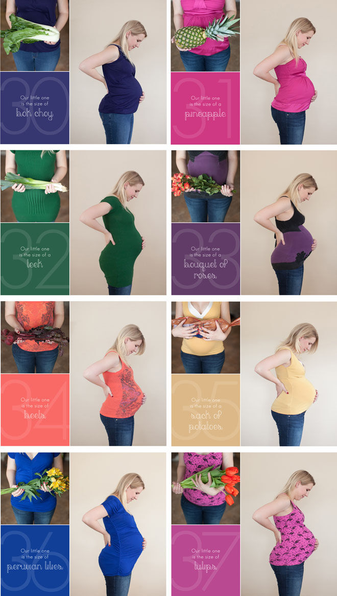 Pregnancy by week photos comparing to objects