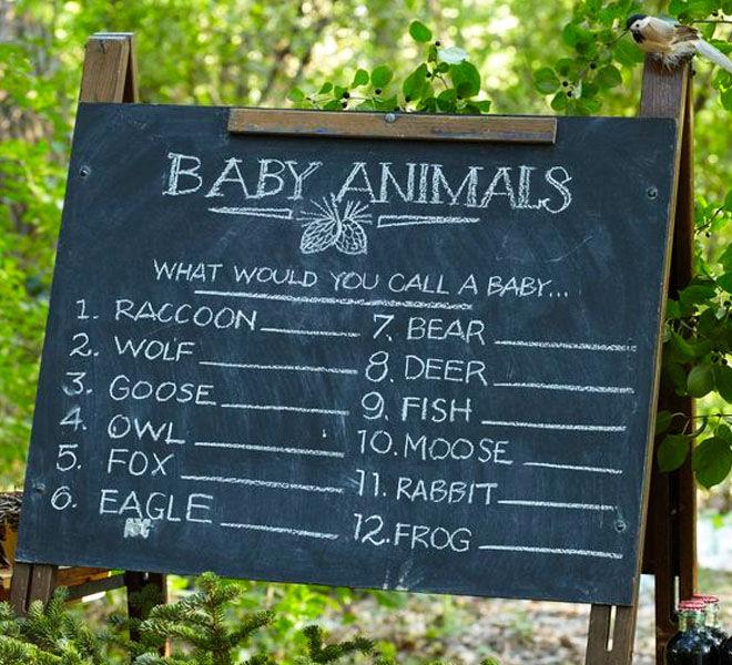Safari baby shower game, name the baby animal