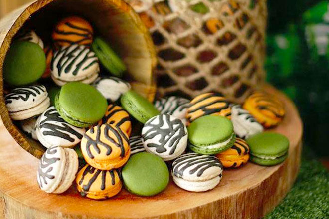 Safari baby shower macarons