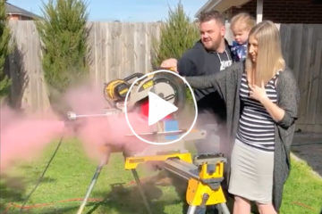 Aussie chippy's unique gender reveal