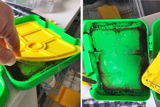 Mums mouldy lunchbox discovery