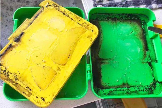 Mouldy lunchbox warning