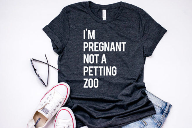 I'm pregnant not a petting zoo funny maternity t-shirt