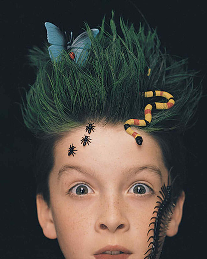 creepy crawlies boys hair for halloween