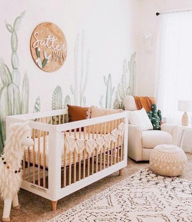 Cactus nursery theme ideas