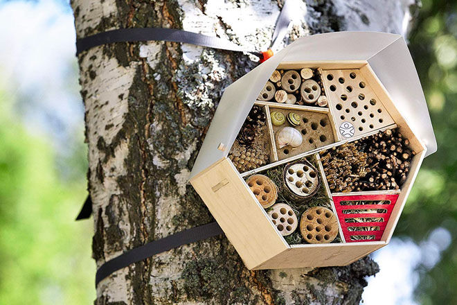 Insect Hotel, Haba