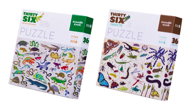 Insect and Amphibians Puzzles