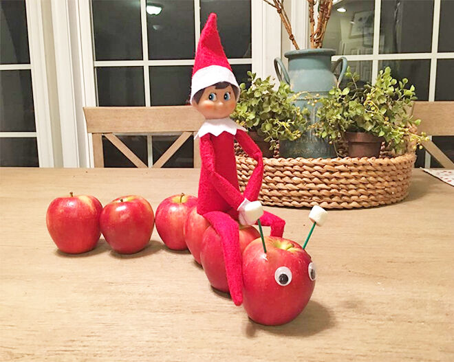 Elf on the Shelf riding apple caterpillar