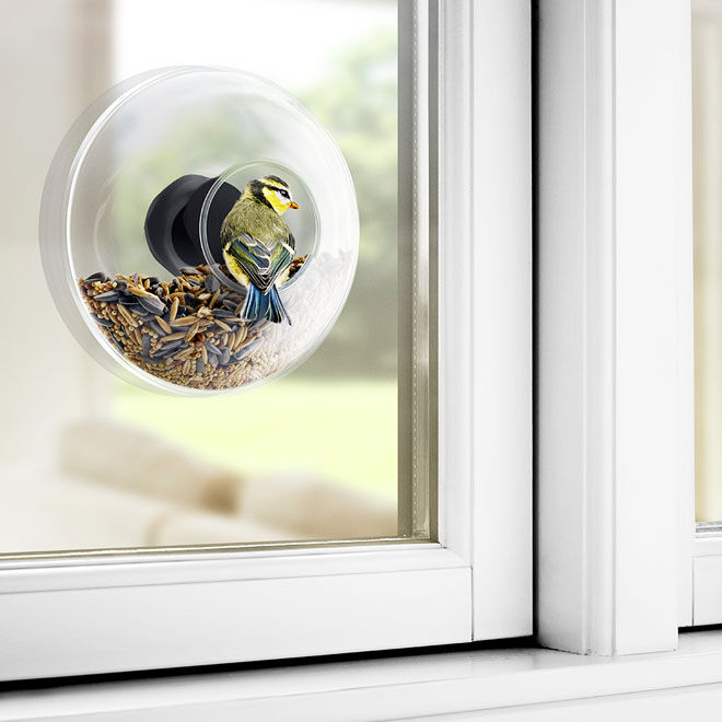 Glass window bird feeder