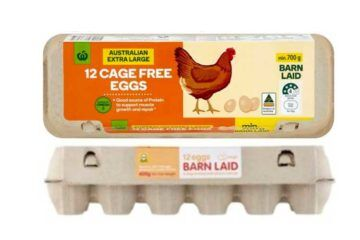 Eggs recalled salmonella