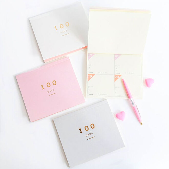 Mini pocket notepad and planner