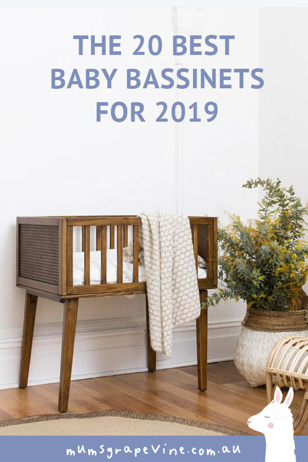 Best 20 baby bassinets